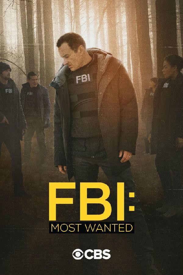 联邦调查局:通缉要犯 第二季 BD高清电视下载 更新至第12集